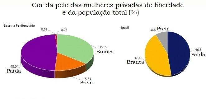 Cor de pele da população carcerária feminina